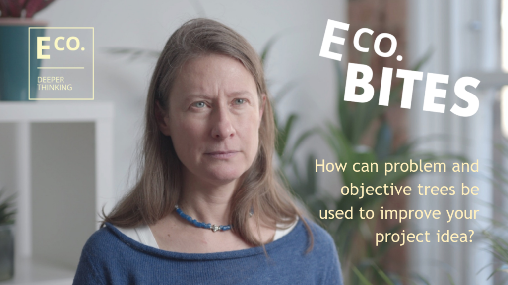 E Co. bites: How can problem and objective trees be used to improve your project idea?