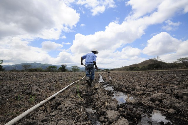 Boosting climate finance for adaptation actions under the NDCs in Latin America and the Caribbean