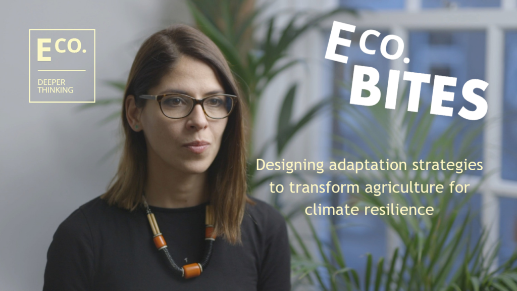 E Co. bites: Designing adaptation strategies to transform agriculture for climate resilience