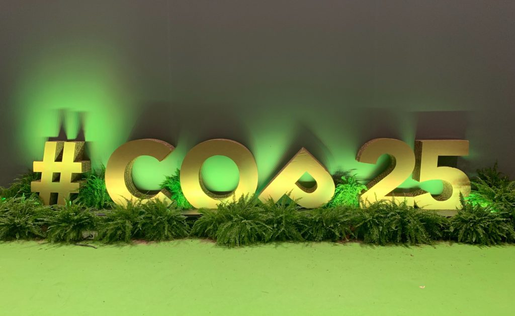 COP25: The gap between actions and words—why Article 6 negotiations continue to stall