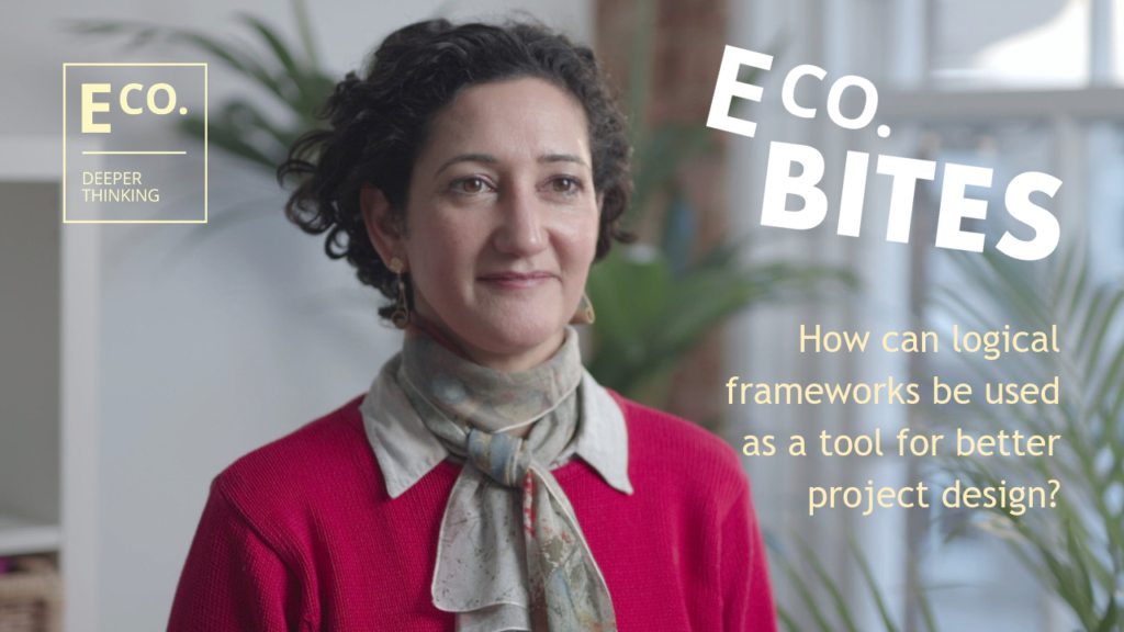 E Co. bites: How can logical frameworks be used as a tool for better project design?